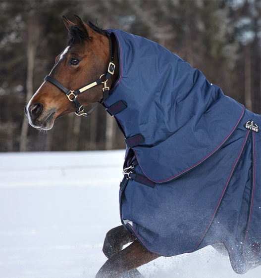 AAAFNA-BQGB-Rambo-Optimo-Horse-Hood