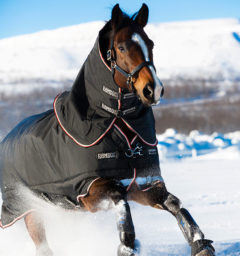 Rambo Supreme Turnout by horseware
