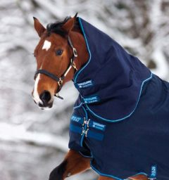 Hood navy / electric blue by Horseware