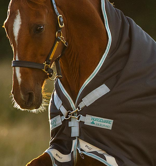 1200D Lightweight Turnout Rug Half Neck Waterproof Brown 5/'6-6/'9 *CLEARENCE*