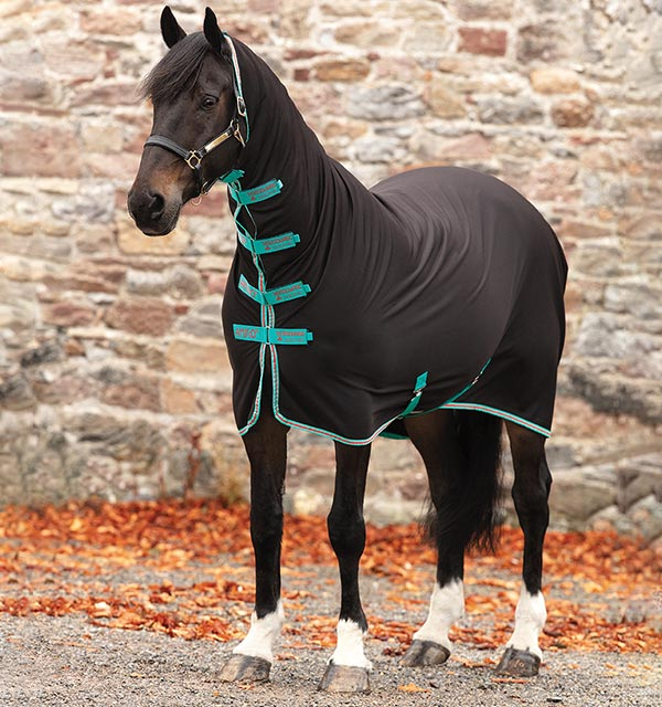 Amigo All In 1 Jersey Cooler Horses Riding Body Cover Accessory
