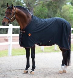 Rambo Ionic Stable Sheet Horse by Horseware