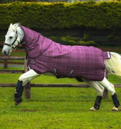 Rhino Plus Pony Berry by Horseware