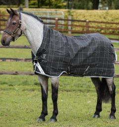 Pony Blanket for narrow ponies