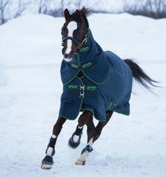 Amigo® Bravo 12 Plus Pony (250g Medium)