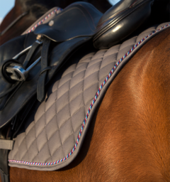 English saddle pad for shows and competitions