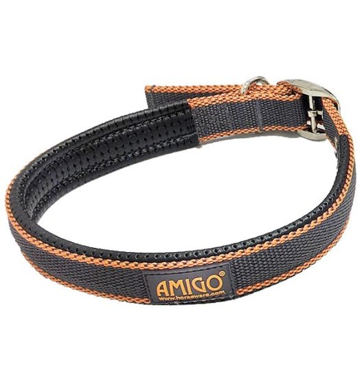 Weekly Deal - Amigo® Dog Collar