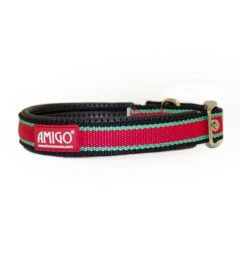 Amigo Dog Collar Red/ White/ Green/ Black