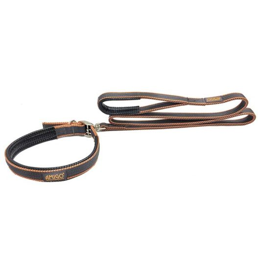 Weekly Deal - Amigo® Dog Lead
