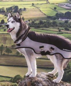 Rambo® Sports Series Dog Blanket
