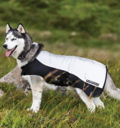 Rambo Sport Series Dog Blanket, Reflective