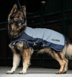 Eye catching reflective navy dog blanket