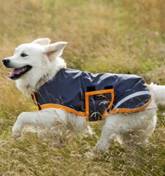 Amigo Waterproof Dog Blanket Excalibur and orange