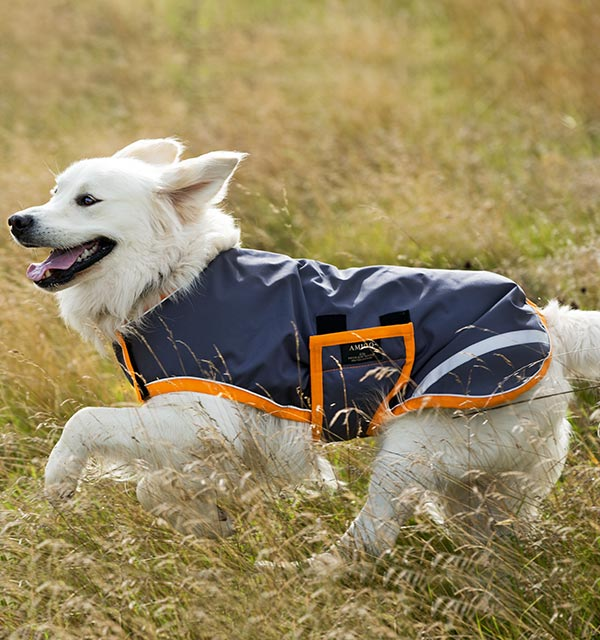 Amigo Waterproof Dog Blanket Horseware Ireland