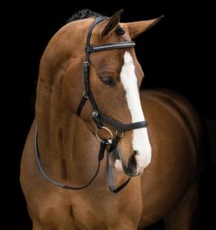 Rambo® Micklem® Competition Diamante Bridle English Leather