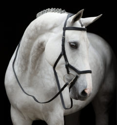 Rambo® Micklem® Original Competition Bridle