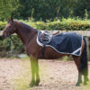 Amigo® Competition Sheet Pony (Fleece lining)