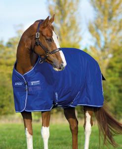 Amigo® Hero 6 Pony (0g Lite)