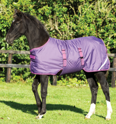 Amigo® Foal Turnout (200g Medium)