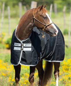 Amigo® Stock Horse (0g Lite)