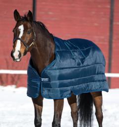 Horseware® Liner (100g Lite)