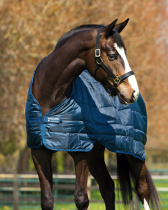 Horseware® Liner (200g Medium)