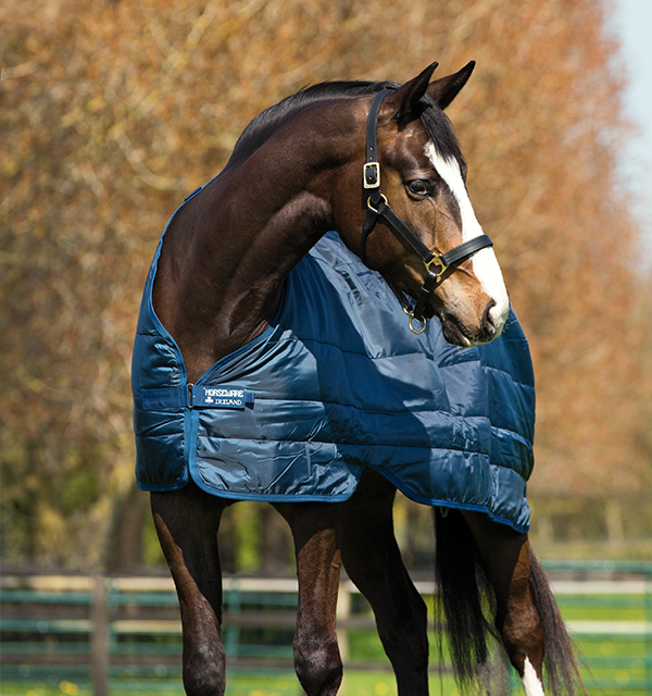 Horseware Liner 200g Medium
