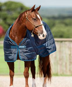Horseware® Liner (300g Heavy)