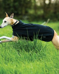 Amigo® Fleece Dog Blanket