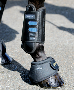 DALMAR® Eventer Front Boot