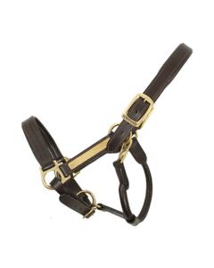 Amigo® Padded Leather Halter