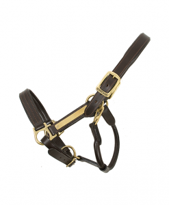 Amigo® Padded Leather Halter