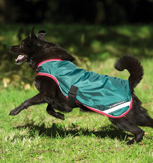 Rambo Waterproof Dog Blanket Green/Red