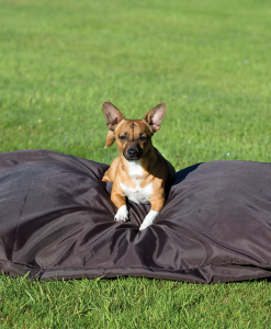 Rambo® Pillow Dog Bed
