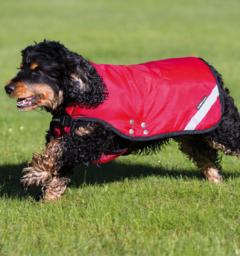 Rambo® Duo Dog Blanket