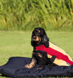 Rambo® Deluxe Dog Blanket