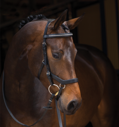 Rambo® Micklem® Competition Diamante Bridle