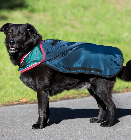 Rambo Waterproof Dog Blanket under layer