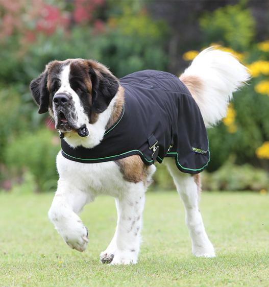 Sportz-Vibe® Dog Blanket
