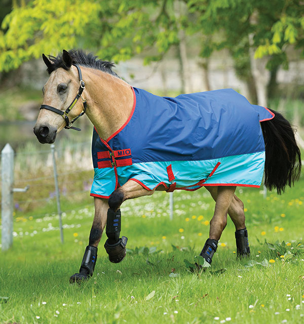 Horse 600D 200g Turnout Rug Navy/Tan