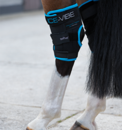 Ice-Vibe® Hock Wrap