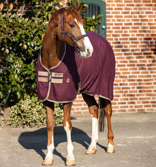 Amigo® Stable Sheet Pony (No fill)