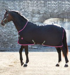 Amigo® Stable Sheet Pony (No fill)