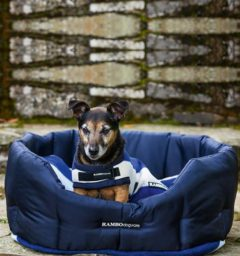Rambo Dog Bed - Polyester Walls, Fleece Cushion - Navy with Whitney Navy