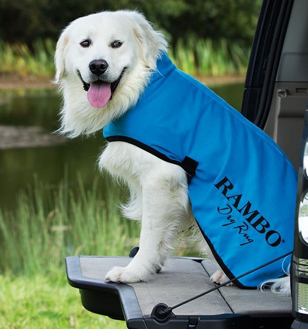 Rambo Dog Dry Rug