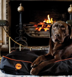 Rambo Ionic® Dog Bed