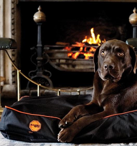 Rambo Ionic® Dog Bed