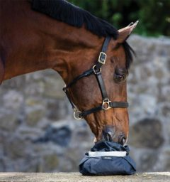Weekly Deal - Horseware® Feedbowl