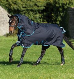 Amigo Bravo 12 Plus Bundle horse blanket turnout