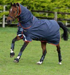 Amigo Bravo 12 Plus horse blanket